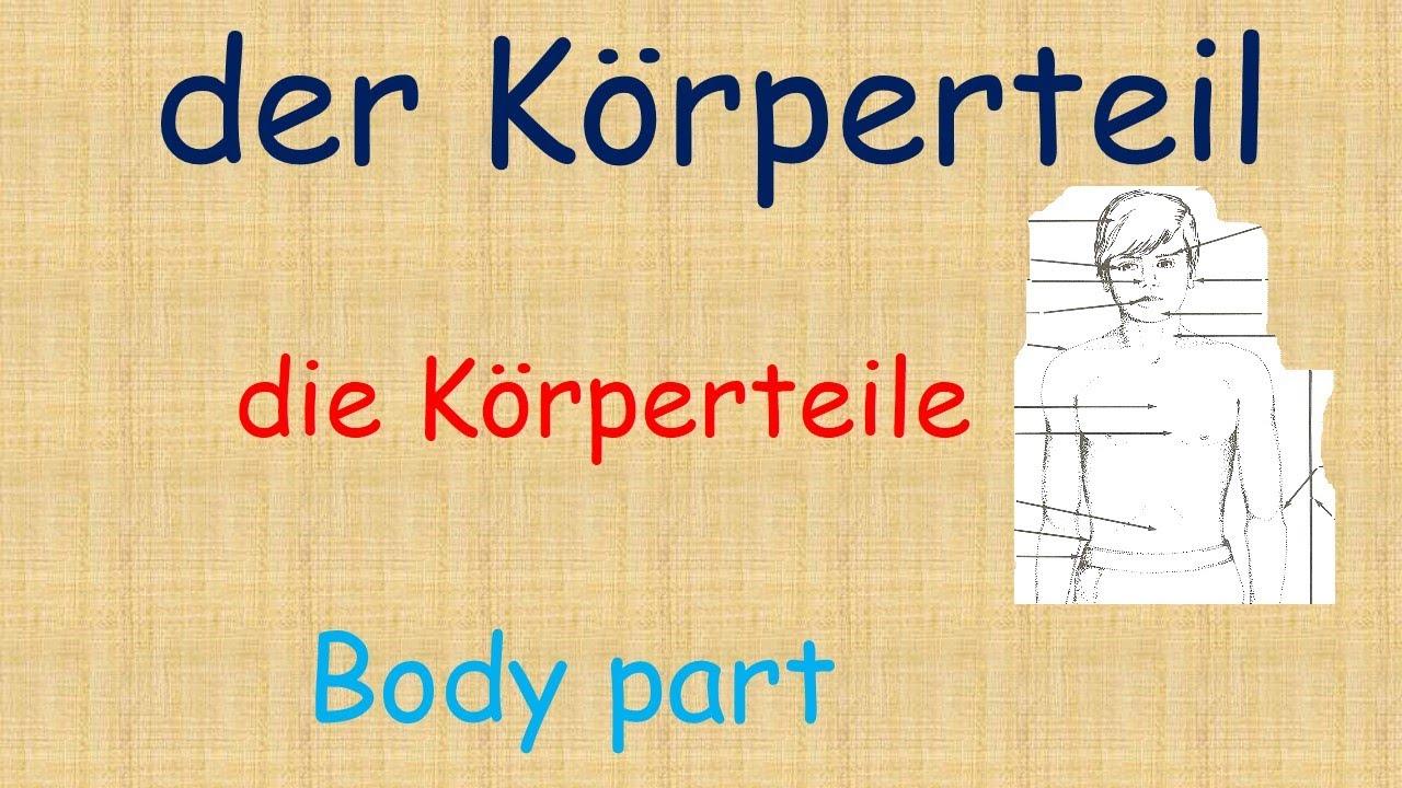 Learn German / der Körperteil - YouTube