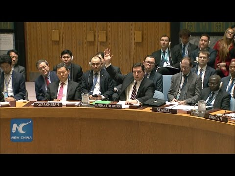 Russia vetoes Security Council draft resolution on alleged chemical attack in Syria