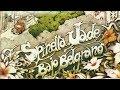 Miniature de la vidéo de la chanson Vas A Iluminar La Casa