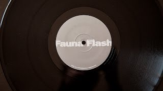 Fauna Flash - Experimental Error (vinyl)