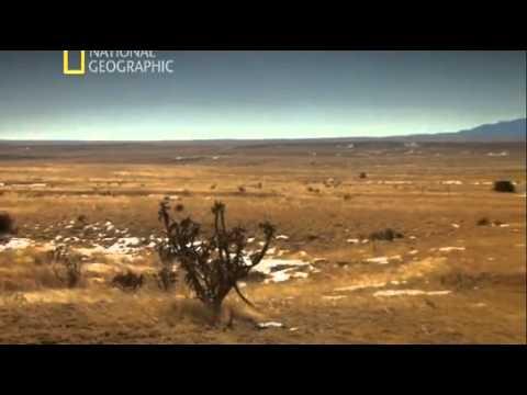 В поисках правды. НЛО / The Truth Behind. UFOs (2011) National Geographic