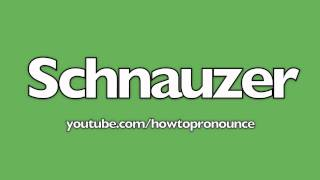 How To Pronounce Schnauzer