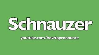 How To Pronounce Schnauzer