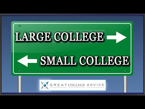 big colleges vs small colleges The small high schools created in the shells of old large high schools have average graduation rates of 75 percent, 15 percent higher than in the city as a whole and far greater than those of the schools they replaced.