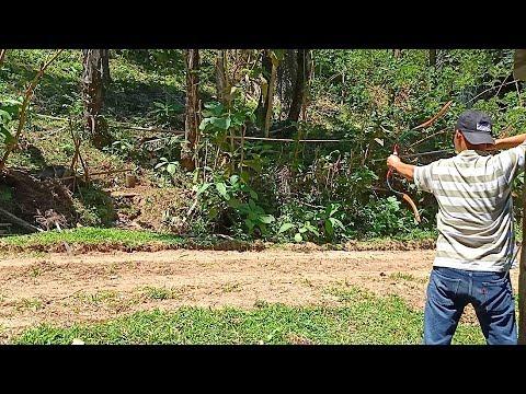 BERTAHAN HIDUP: BAWA PANAH KE HUTAN SAMBIL MASAK GULA AREN