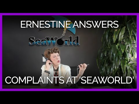Lily Tomlin's Ernestine Answers Complaint Calls at 'SeaWorld'
