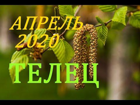 ТЕЛЕЦ. АПРЕЛЬ 2020 г. ПРОГНОЗ. САМОЕ ВАЖНОЕ ДЛЯ ВАС!!!