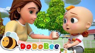 Boo Boo Song | DoDoBee Nursery Rhymes & Kids Song
