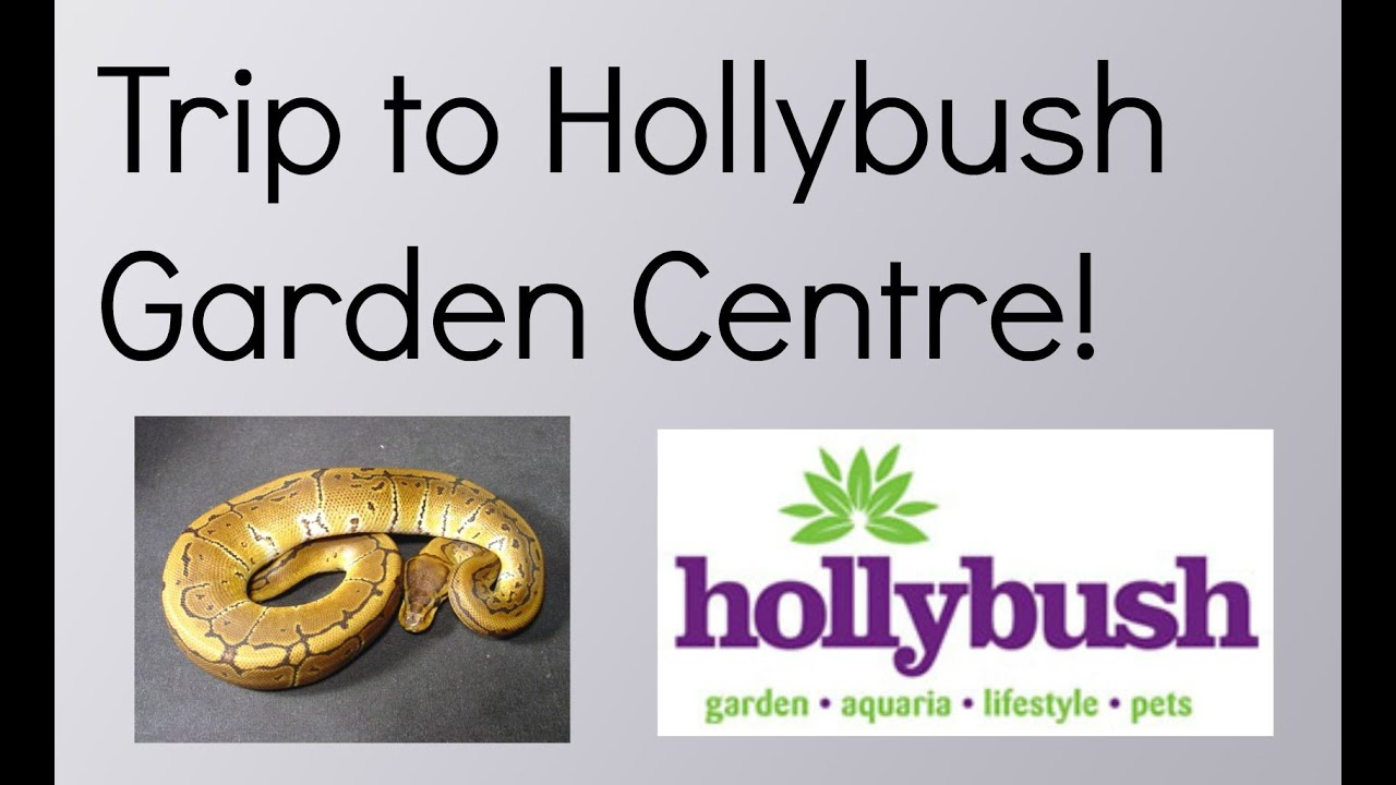 my trip to hollybush garden centre youtube. Black Bedroom Furniture Sets. Home Design Ideas