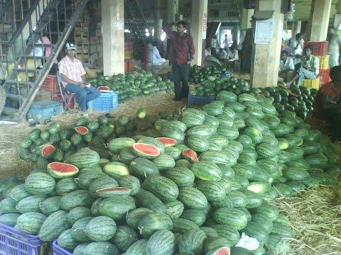 Unique Stories :  Visiting APMC Market Vashi