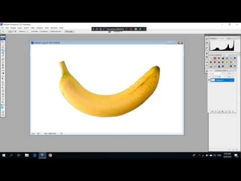 How To Inverse Selection In Adobe Photoshop? Select Inverse Photoshop