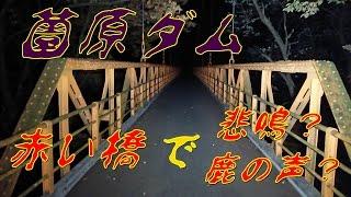 心霊スポット  薗原ダムの赤い橋 怖くて渡れない (汗