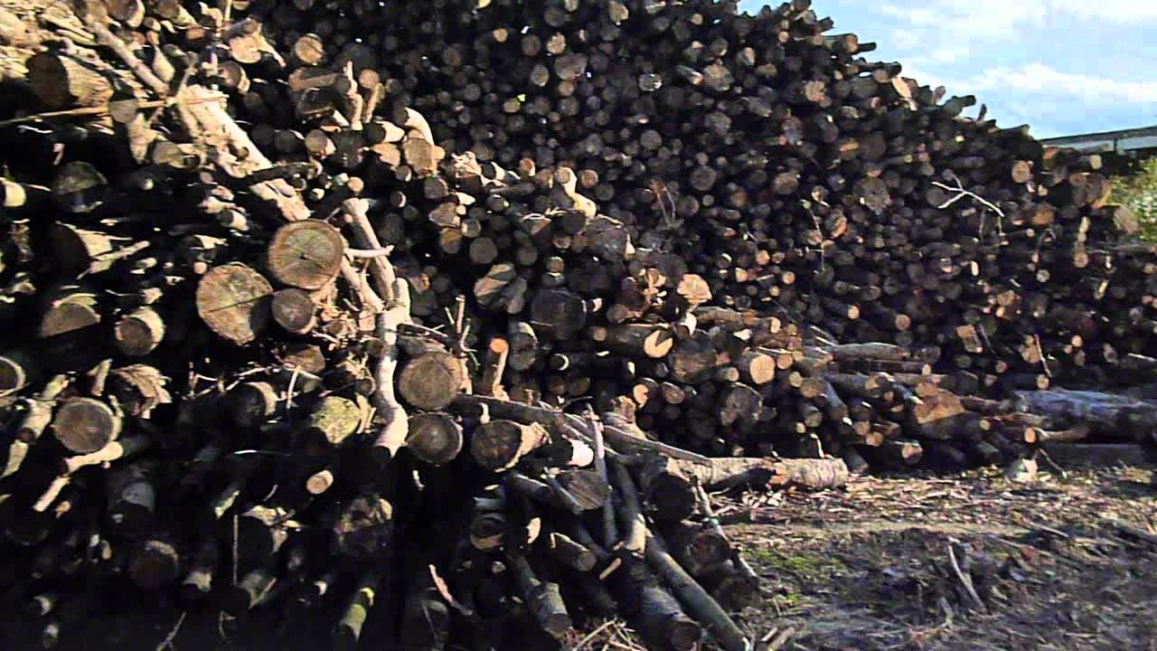 Vendita legna da ardere pellet carignano vinovo none for Vendita legna da ardere