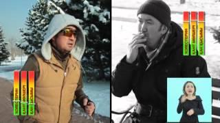 Профилактика болезней системы кровообращения и сахарного диабета на каз.яз.