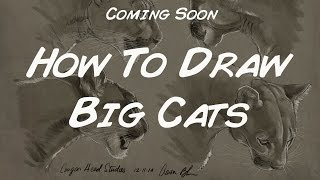 How To Draw Big Cats...coming soon to CreatureArtTeacher.com