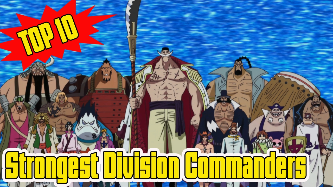 Top 10 Strongest Division Commanders Of The Whitebeard ...