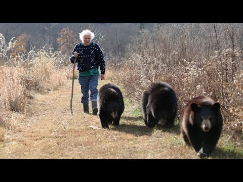 We're Going On A Bear Hike