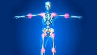 Как сохранить суставы здоровыми при занятиях спортом: единоборствами и в тренажерном зале