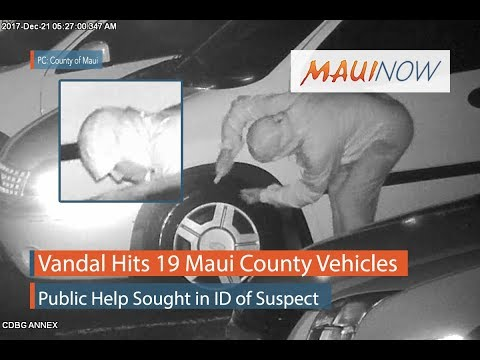 Vandal Hits 19 Maui County Vehicles
