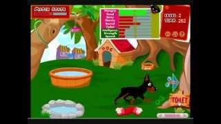 Najukochańszy Pies - Gry ze Zwierzętami