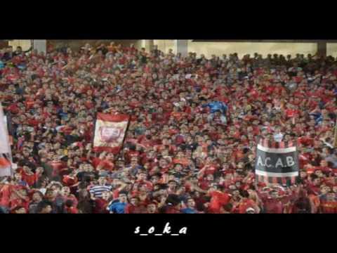 Al Ahly Vs Petrojet Ultras Ahlawy