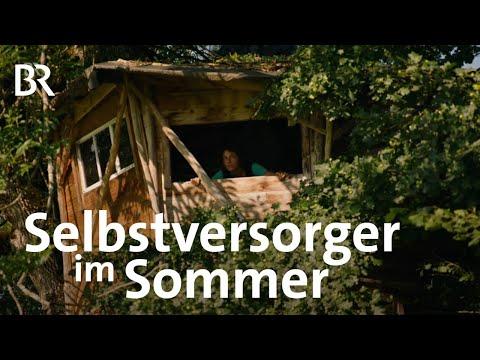 Die Holz-Künstlerin Lucia Hiemer: Wachsen und Werden | Zwischen Spessart und Karwendel | BR