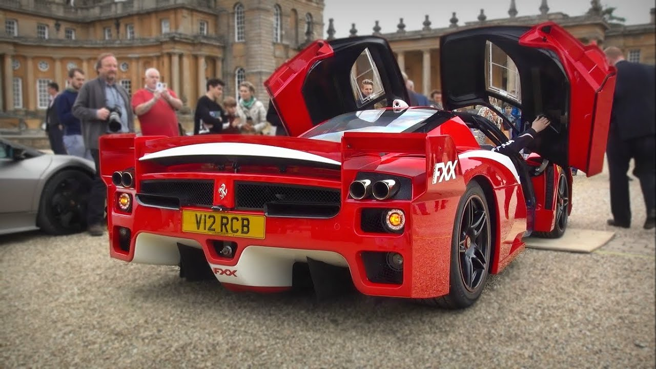 Road Legal Ferrari Enzo Fxx Stupidly Loud Revs Amp Crazy