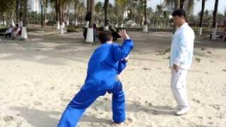 #Первая форма стиля Шень - контроль мастером #Шень Чжи 1