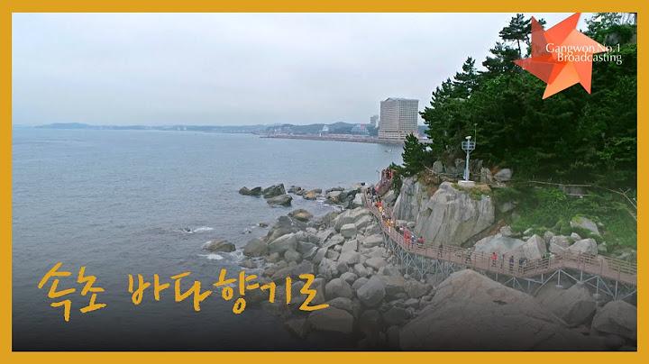 [G1 강원민방] 속초 바다향기로 항공촬영