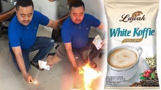 Download Video Viral Video Bubuk Luwak White Koffie Bisa Terbakar dan Dituding Kandung Mesiu, BPOM Beri Pernyataan MP3 3GP MP4