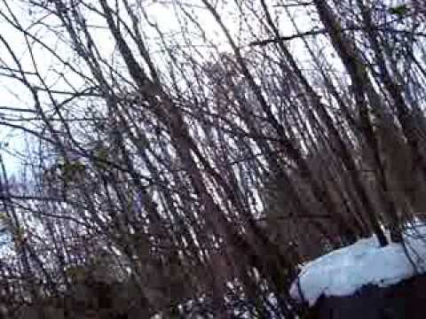 Blair Witch The Movie Part 3