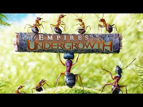 Empire of the undergrowth : ระทึกแมลงทะลุดิน โด้ไข่[Ringingz]