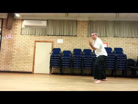Brisbane Knife Combat and Defense Study Group - The 28 Step Form