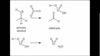 Oxidation of primary alcohol to yield carboxylic acid