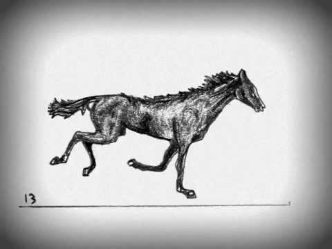 Horse Running Animation - YouTube - photo#11