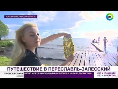 Как доехать до переславля залесского из москвы