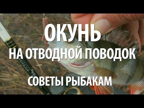 ловля рыбы на спиннинг с отводным поводком