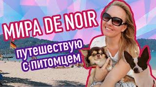 Новый канал про путешествия с питомцем на самолете за границу. Mira De Noir: travel & pets. Трейлер.
