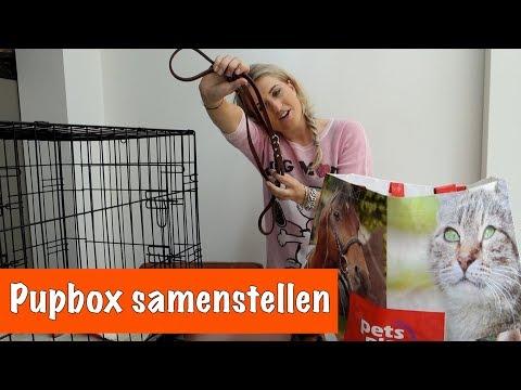 Uboxing; wat heb je allemaal nodig bij een puppy? | DierenpraatTV