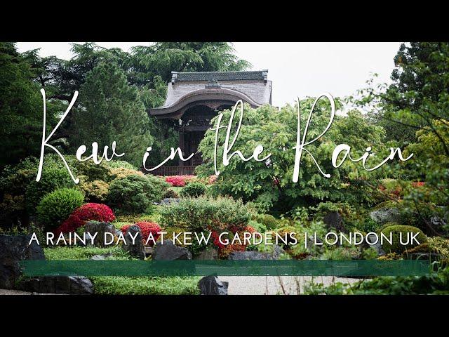 Kew Gardens, London   Rainy Day Botanical Gardens   Glasshouses   Redwoods   Peaceful Botanical Vlog