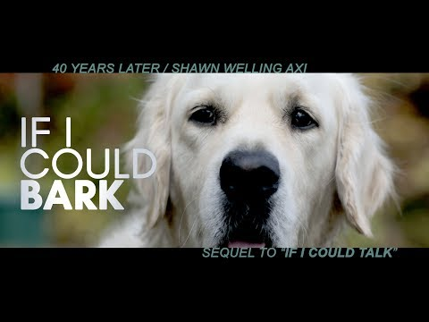 IF I COULD BARK / BEST DOG FILM / OFFICIAL VIDEO