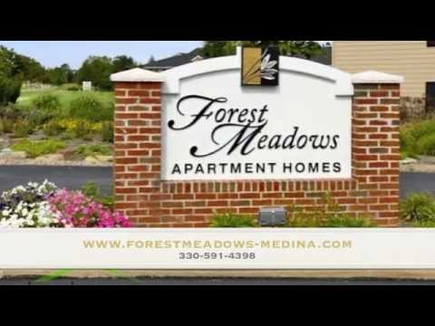 Amazing Luxury Apartment in Medina, Ohio!