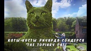 Коты-кусты художника Ричарда Сондерса