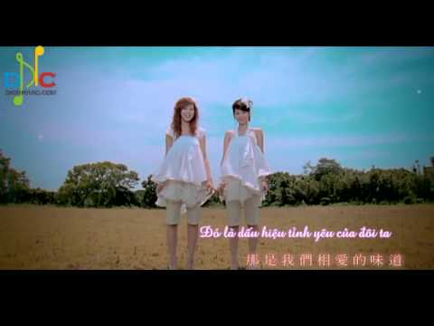 [Vietsub] Cỏ anh đào - 樱花草- Sweety