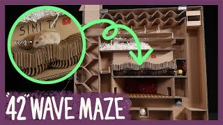 햄스터 콩이 42단 웨이브 미로 탈출 (Hamster 42 Wave maze)