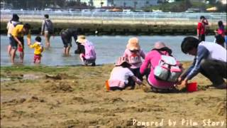 貝塚市の二色の浜では、4月16日から6月5日まで潮干狩りを開催してい...
