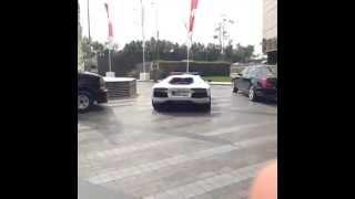Dubai  Lamborghini Aventador Police Car 2013
