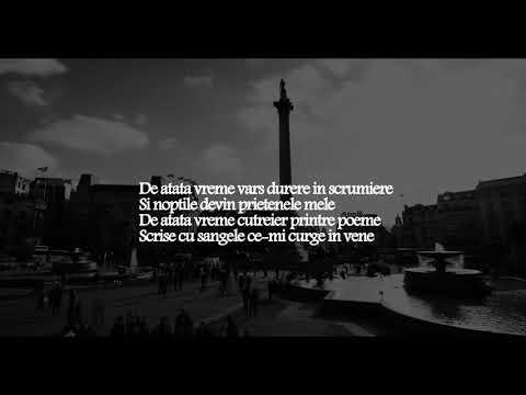 Nimeni Altu - De atata vreme (Lyric Video)