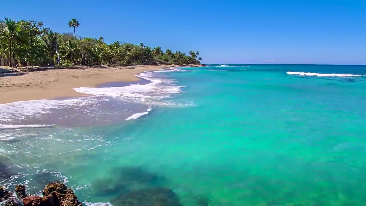 Download Dominican Beach with Waves Rolling - Natural Background With Ocean Sounds