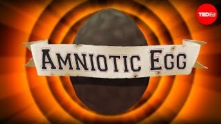 The Game-changing Amniotic Egg - April Tucker